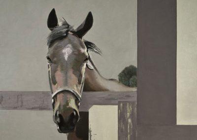 Cabeza de caballo. Óleo sobre lienzo. 115x115cm